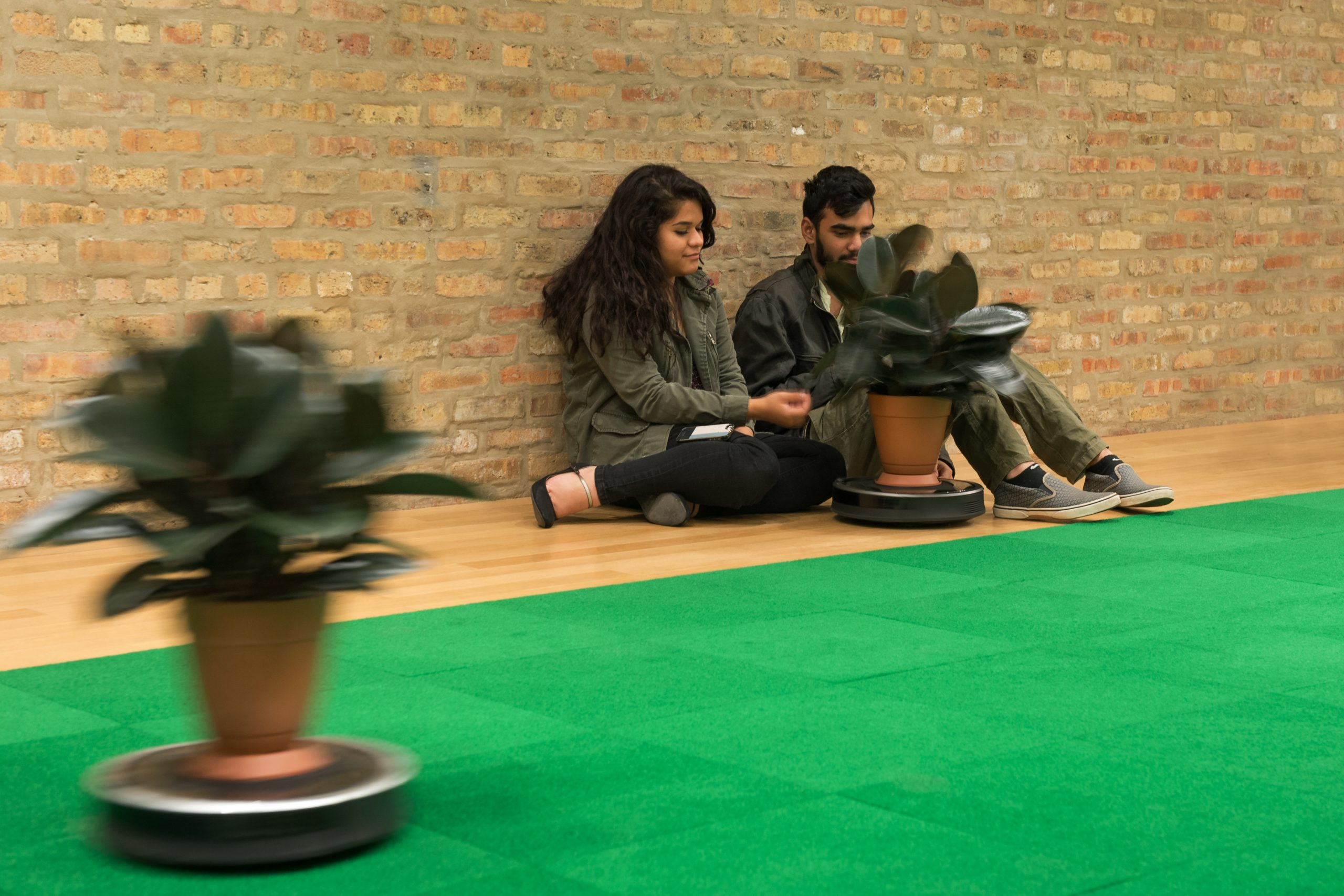 Two moving roombas with a rubber tree on top and two viewers sitting and interacting with one of the roombas